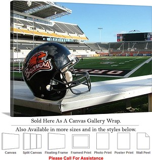 "Oregon State University Football Reser Stadium-3 Canvas Wrap 30"" x 23"""