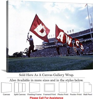 "Mississippi State University DAWGS Flag Football Canvas Wrap 30"" x 23"""