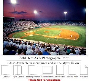"Mississippi State University at Dudy Noble Field Photo Print 24"" x 16"""