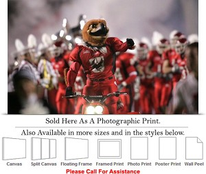 "University of Utah College Campus Mascot Swoop Photo Print 24"" x 16"""