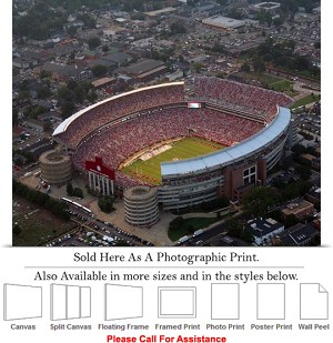 "University of Alabama at Bryant Denny Stadium Photo Print 24"" x 16"""