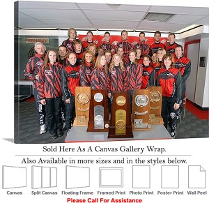 "University of New Mexico College Lobo Ski Team Canvas Wrap 30"" x 20"""