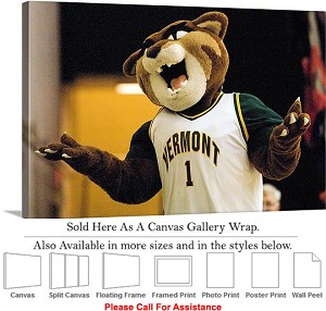 "University of Vermont College Mascot Catamount Canvas Wrap 30"" x 20"""