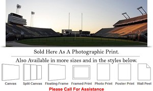 "East Carolina University Dowdy Ficklen Stadium-2 Photo Print 36"" x 12"""