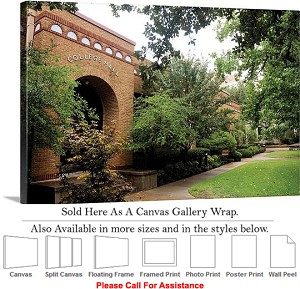 "University of Texas at Arlington College Hall Canvas Wrap 30"" x 20"""