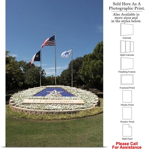 "University of Texas at Arlington Logo and Flags Photo Print 16"" x 24"""