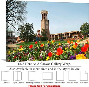 "Belmont University Campus Tower on Campus Spring Canvas Wrap 30"" x 20"""