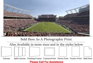 "South Carolina University of Home of the Gamecocks Photo Print 30"" x 13"""