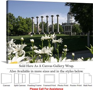 "University of Missouri College Campus Francis Quad Canvas Wrap 30"" x 20"""