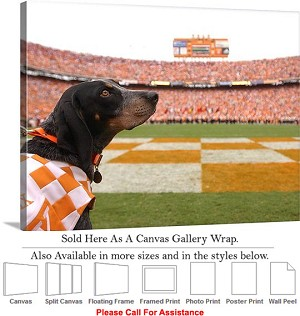 "University of Tennessee Stadium Smokey Looks Back Canvas Wrap 30"" x 20"""