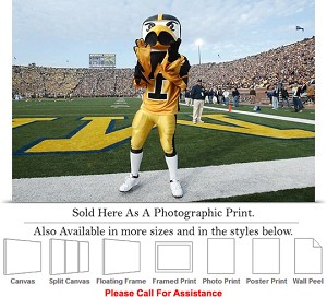 "University of Iowa Herky Pumps Football Mascot Photo Print 24"" x 16"""