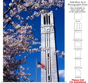 "North Carolina State University Campus Bell Tower Photo Print 16"" x 24"""