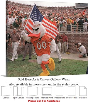 "University of Miami Sebastian with American Flag Canvas Wrap 30"" x 25"""