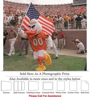 "University of Miami Sebastian with American Flag Photo Print 24"" x 20"""