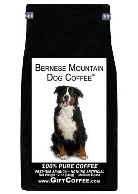 Bernese Mountain Dog Gift Coffee, 12 Ounce Bag of Gourmet Coffee