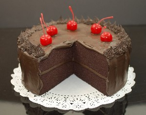 Fake Food Fudge Cake With Slice Out