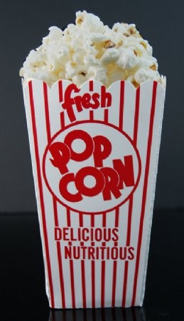 Fake Food Popcorn Box Magnet