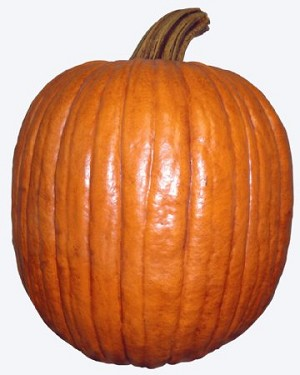 Fake Food Mammoth Size Natural Pumpkin