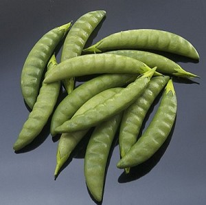 Fake Food Pea Pods (pack of 12)