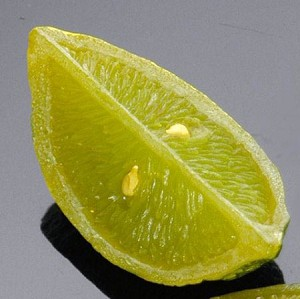 Fake Food Lime Wedge - One Piece