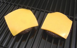 Fake Food Cheeseburger Patties (pack of 2)
