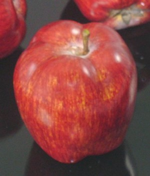 Fake Food Red Delicious Apple - One Piece