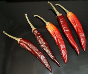 Fake Food Chili Peppers (pack of 5)