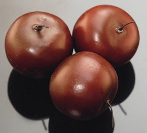 Fake Food Plums (bag of 3)