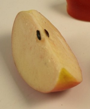 Fake Food Apple Wedge