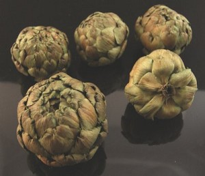 Fake Food Natural Artichokes Preserved And Dried Botanicals (bag/5)