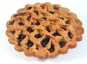 Fake Food Crisscross Baked Blueberry Pie