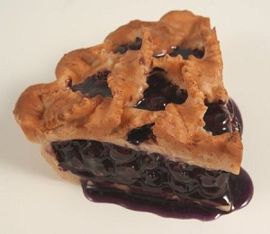Fake Food Crisscross Baked Blueberry Pie Slice