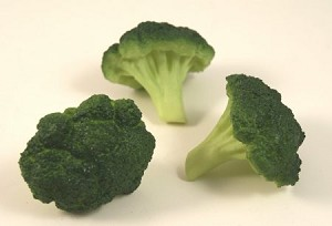 Fake Food Broccoli Piece pack of 3