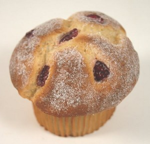 Fake Food Cranberry Muffin
