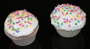 Fake Food Cupcakes Confetti set of 2