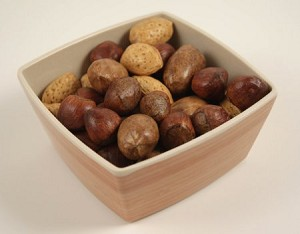 Fake Food Deluxe Mixed Nuts Set in Mod Square Dish