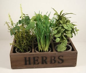 Fake Food Herb Garden in Wood Box