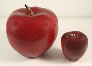 Fake Food Jumbo Red Apple