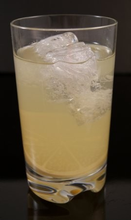 Fake Food Polycarbonate Lemonade Glass
