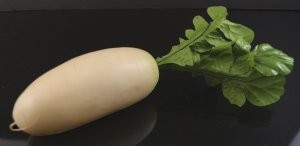 Fake Food White Turnip