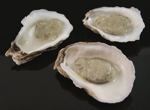Fake Food Oysters On Half Shell (pack of 3)