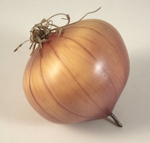 Fake Food Red Onion - One Piece