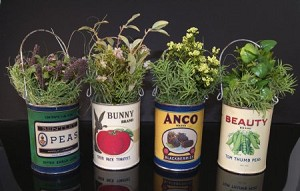 Fake Food set of 4 Herb Cans
