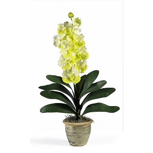 Single Stem Vanda Orchid Silk Flower Arrangement