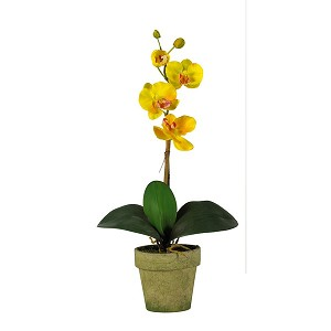 Potted Phalaenopsis Silk Orchid Arrangement