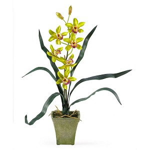 Potted Cymbidium Silk Orchid Arrangement