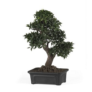 "Japanese Ficus Bonsai 24"" Silk Plant"