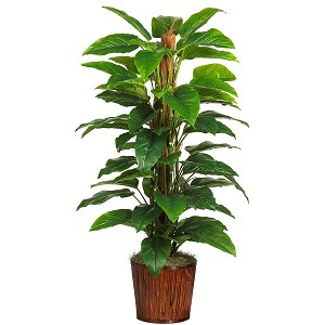 "59"" Philodendron Silk Plant (Real Touch)"