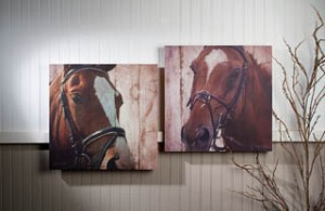 Horse Couple Canvas Set of 2
