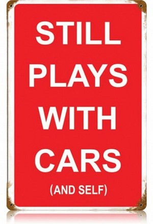 Plays with Cars and Self Vintage Metal Sign